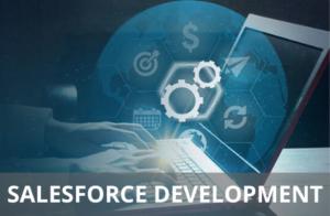 Salesforce development service